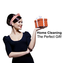 Home Cleaning - The Perfect Gift