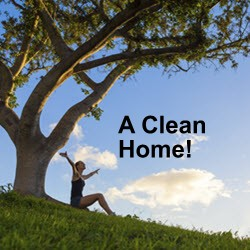 Benefits of Professional Home Cleaning