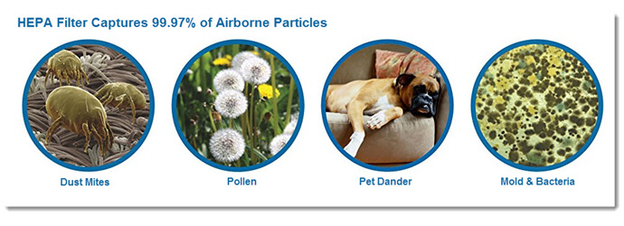 Home Air Purifiers - HEPA Filters