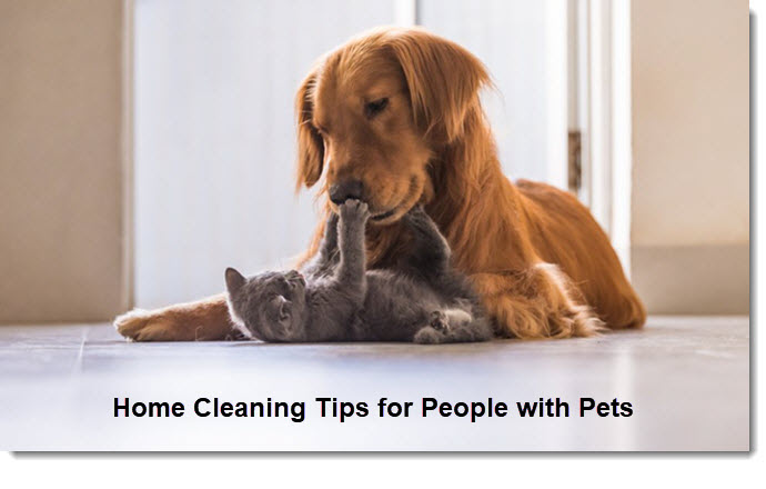 Home Cleaning Tips for People with Pets