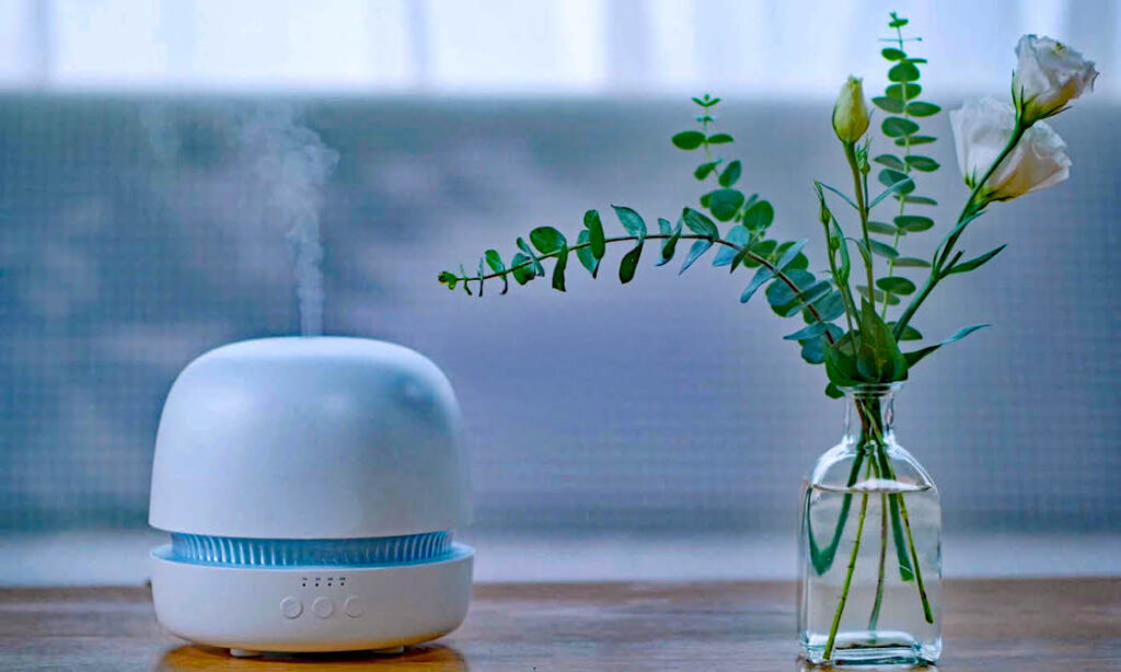 Upper Valley home Cleaning Service - Essential Oil Diffusers